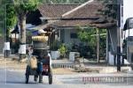 Penjual Jagung Rebus